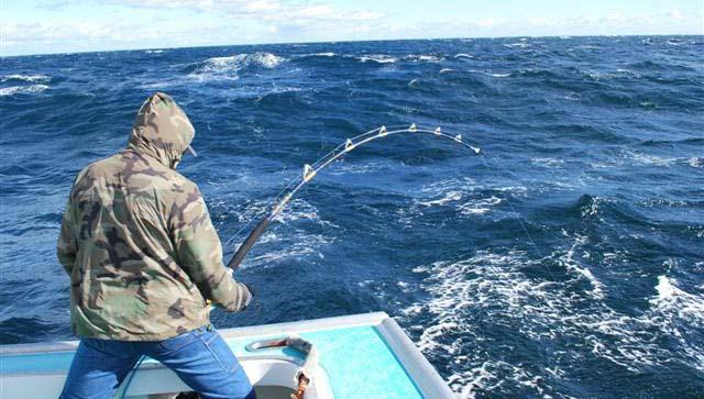 спортивная ловля акул на Кипре