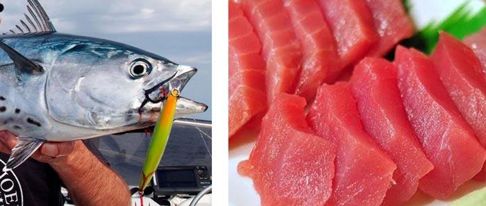 Кипр рыбная ловля